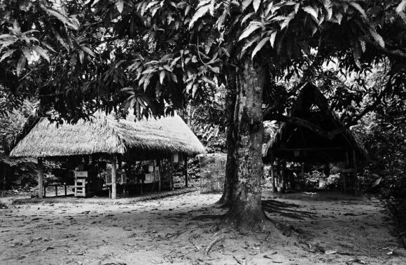 Panguana in 1969: work house and kitchen hut